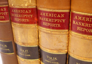 Bankruptcy Laws in New Hampshire